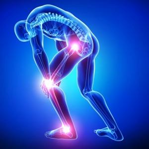 Bolesti kĺbov